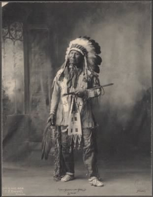 71 - Chief American Horse, Sioux
