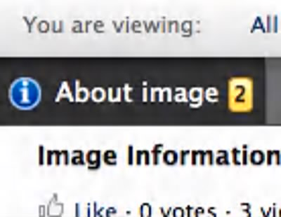 Viewer About Image - Fold3.com