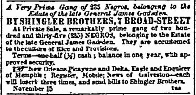 Advertisement for Sale of the Pimlico Plantation of General James Gadsden, Dec 1859 - Fold3.com