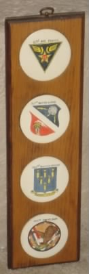 12th AF, 57th Bomb Wing, 321st BG and 445th Bomb Squadron