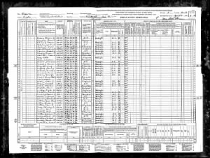 1940 United States Federal Census for Joseph Lewis=prison.jpg