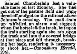 Samuel Chamberlin 1873 Loss of Runaway Mare.JPG