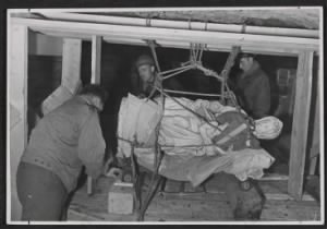 Stephen Kovalyak, George Stout and Thomas Carr Howe transporting Michelangelo's sculpture Madonna and child.jpg