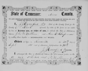 Ann E Chapman 1865 to John M Watkins TN Marr License.jpg